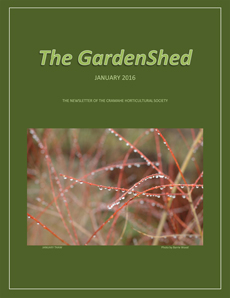 TheGardenShedCvr-230-Jan2016