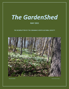 TheGardenShedCvr-230-May2015