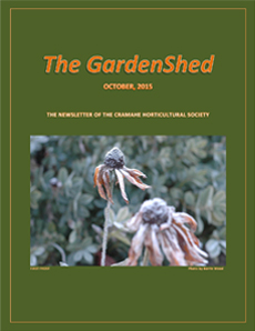 TheGardenShedCvr-230-Oct2015