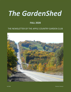 TheGardenShedNewsletter-Fall-2020