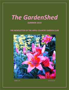 TheGardenShedNewsletter-Summer-2019