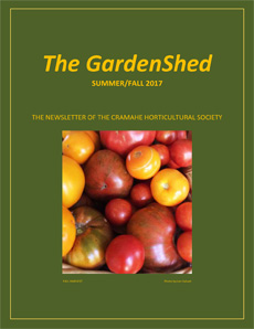TheGardenShedNewsletter-Summer-Fall-2017