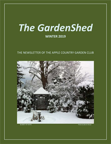 TheGardenShedNewsletter-Winter-2019