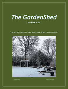 TheGardenShedNewsletter-Winter-2020