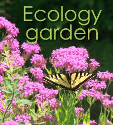 Cramahe Ecology Garden